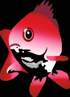 app snapper icon