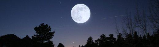 moon jah small