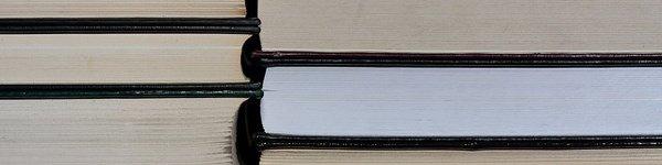 2013 08 21 Stack of Books Sliver