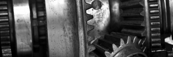 Gears, courtesy William Warby small