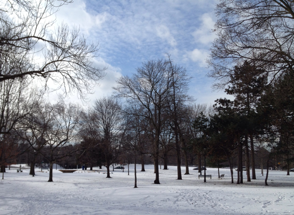Queen's Park During Winter