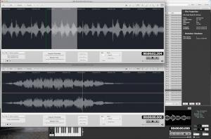 Audiofinder 2 Waveform