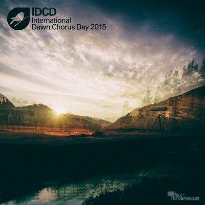 IDCD - 1 - Album Cover