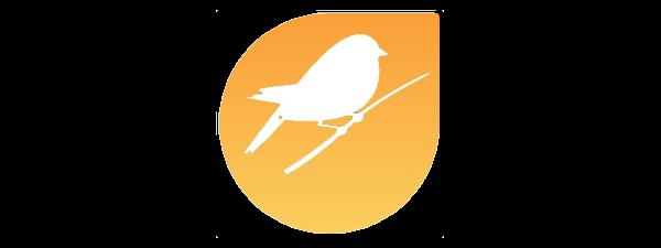 IDCD - 1 - IDCD Logo
