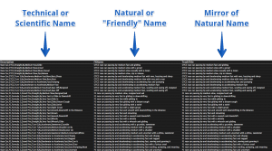 Dual names in metadata