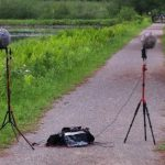 Sound Recording Forest Spring Surround, Position With ORTF M/S