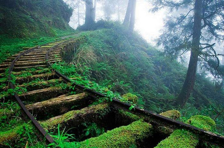 Jiancing HIstorical Trail courtesy Blue Eyes