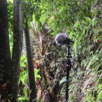 PLC portable kit recording in Brazil