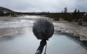 Peter Comley recording in M/S at Yellowstone National Park
