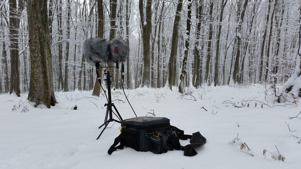 george-vlad-winter-recording