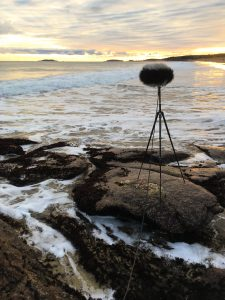 Reid state park ambisonic recording with st450 portrait
