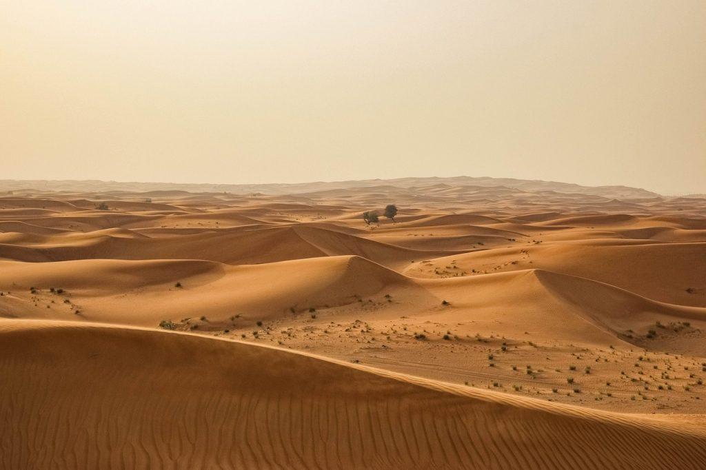 desert 1246282 1280