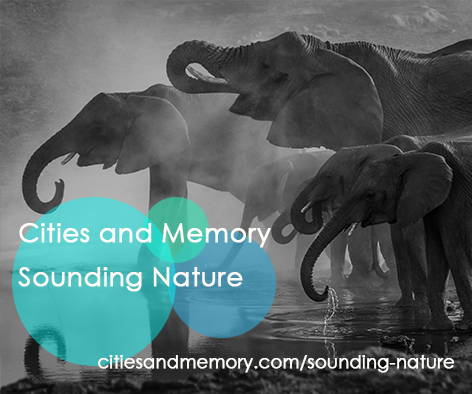 Cities and Memory Launches 'Sounding Nature' Collaborative Field Recording Project
