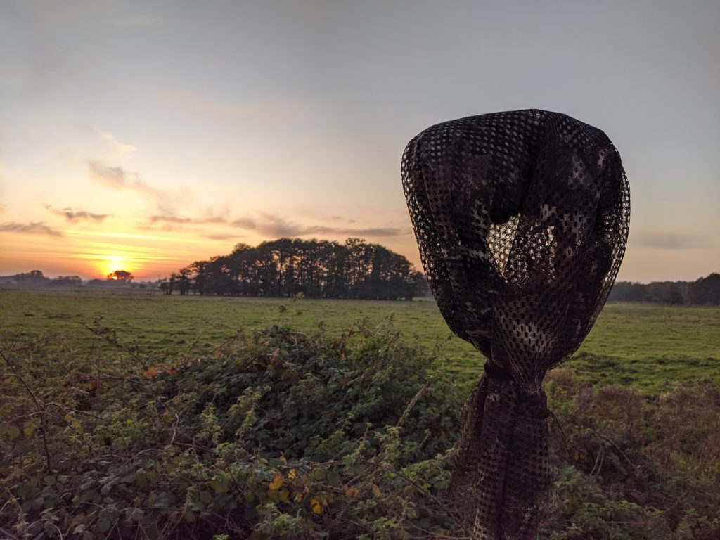 MKH8040 ORTF with camouflaged scrim netting Corvid Roost Norfolk UK