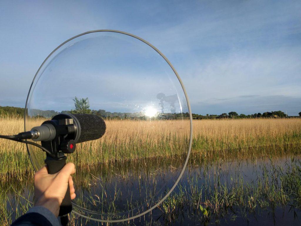 Telinga Parabolic Courthezon France