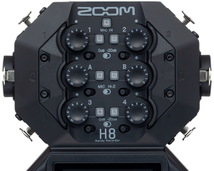 Zoom H8 Inputs